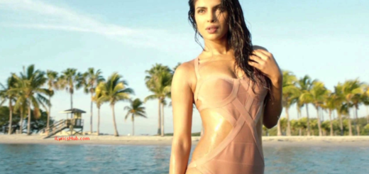 Exotic Lyrics (Full Video) - Priyanka Chopra ft. Pitbull
