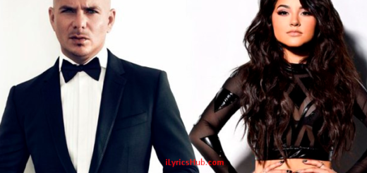 Superstar Lyrics - Pitbull