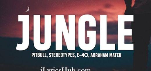 Jungle Lyrics (Full Video) - Pitbull, Stereotypes