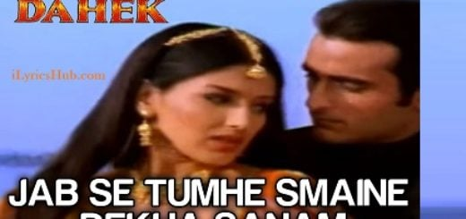 Jab Se Tumhe Maine Dekha Sanam Lyrics (Full Video) - Udit Narayan, Anuradha Paudwal