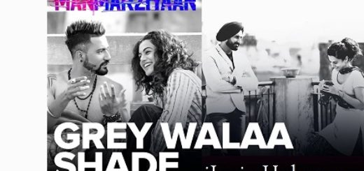 Grey Walaa Shade Lyrics - Manmarziyaan | Amit Trivedi, Shellee