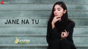 Jane Na Tu Lyrics - Ronit Vohra