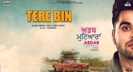 Tere Bin Lyrics Ninja | Ardab Mutiyaran
