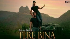 Tere Bina Lyrics by Salman Khan | तेरे बिना