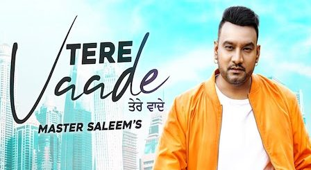 Tere Vaade Lyrics Master Saleem