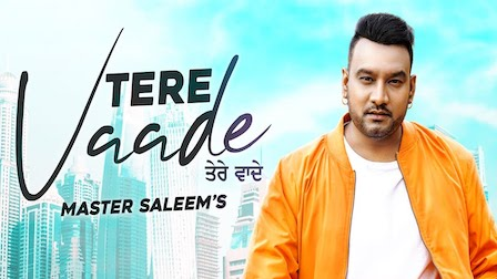 Tere Vaade Lyrics Master Saleem