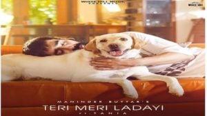 Teri Meri Ladayi Lyrics Maninder Buttar