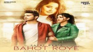 Bahot Roye Lyrics Payal Dev