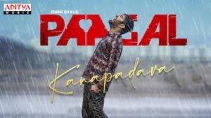 Kanapadava Lyrics Paagal | Anand Aravindakshan